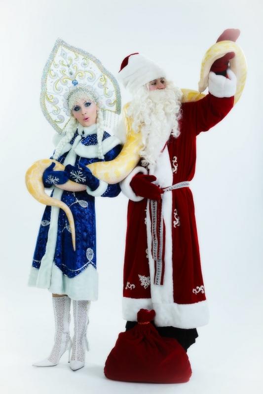 Дед Мороз, Снегурочка и живая змея
