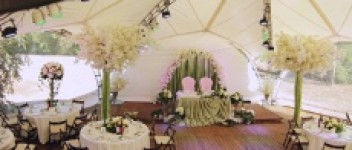 Свадебное агентство Жасмин